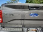 2017 Ford F150 for sale 101603086