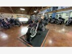 2017 Harley-Davidson Softail Deluxe for sale 201048131