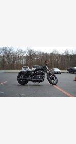 2017 Harley-Davidson Sportster Iron 883 for sale 200727146
