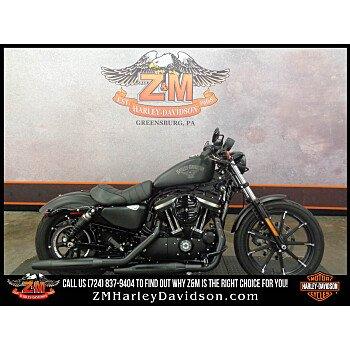 2017 Harley-Davidson Sportster Iron 883 for sale 200784250