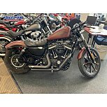 2017 Harley-Davidson Sportster Iron 883 for sale 201112580
