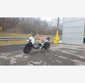 2017 Honda Ruckus for sale 201038096