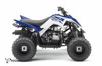 2017 Yamaha Raptor 90 for sale 200362482