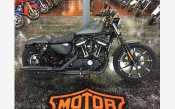 2018 Harley-Davidson Sportster for sale 200491558