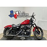2018 Harley-Davidson Sportster Iron 883 for sale 201176744