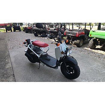 2018 Honda Ruckus for sale 200680969