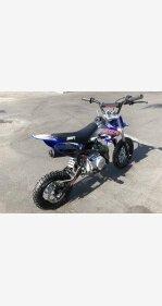 2018 SSR SR110 for sale 200702357