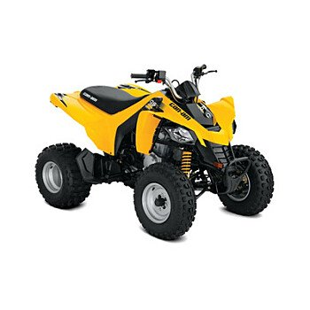 2019 Can-Am DS 250 for sale 200610760