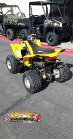 2019 Can-Am DS 250 for sale 200696168