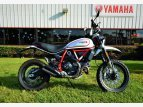 2019 Ducati Scrambler for sale 201149020