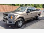 2019 Ford F150 for sale 101602562