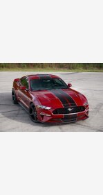 2019 Ford Mustang for sale 101393389