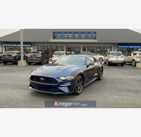 2019 Ford Mustang for sale 101458614