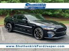 2019 Ford Mustang for sale 101496297
