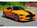 2019 Ford Mustang for sale 101518952