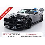 2019 Ford Mustang Shelby GT350 for sale 101600237