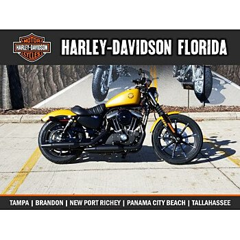 2019 Harley-Davidson Sportster Iron 883 for sale 200671633