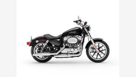 2019 Harley-Davidson Sportster for sale 200688496