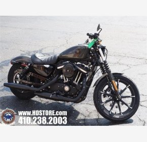 2019 Harley-Davidson Sportster Iron 883 for sale 200716305
