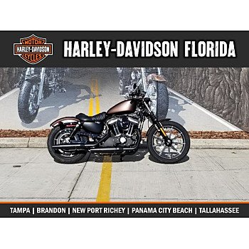2019 Harley-Davidson Sportster Iron 883 for sale 200718350