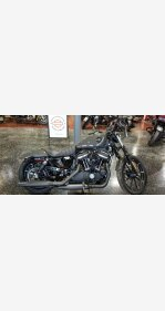 2019 Harley-Davidson Sportster for sale 200736561