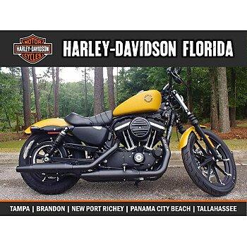 2019 Harley-Davidson Sportster Iron 883 for sale 200756322