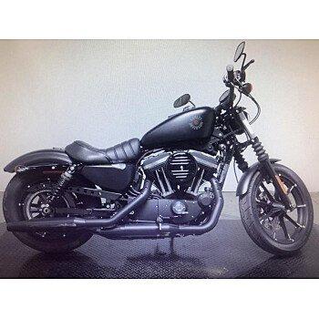 2019 Harley-Davidson Sportster for sale 200775302