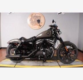 2019 Harley-Davidson Sportster Iron 883 for sale 200782157
