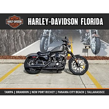 2019 Harley-Davidson Sportster Iron 883 for sale 200795006
