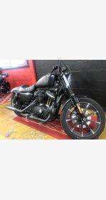 2019 Harley-Davidson Sportster for sale 200800179