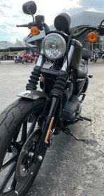 2019 Harley-Davidson Sportster Iron 883 for sale 200813390