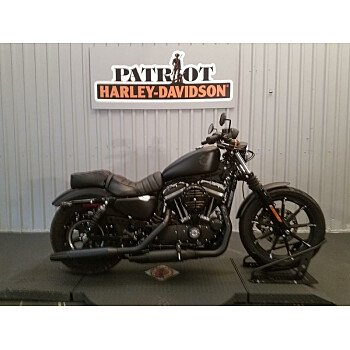 2019 Harley-Davidson Sportster Iron 883 for sale 200841584