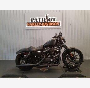 2019 Harley-Davidson Sportster Iron 883 for sale 200841587