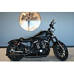 2019 Harley-Davidson Sportster Iron 883 for sale 200877317