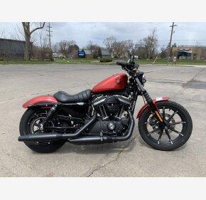 2019 Harley-Davidson Sportster Iron 883 for sale 200896611