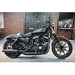 2019 Harley-Davidson Sportster Iron 883 for sale 200922426