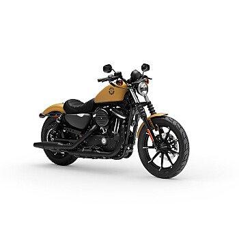 2019 Harley-Davidson Sportster Iron 883 for sale 200922574