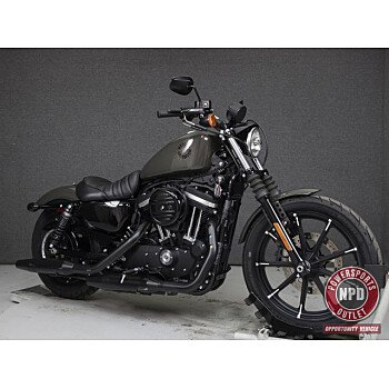 2019 Harley-Davidson Sportster Iron 883 for sale 200925372