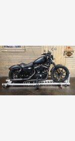 2019 Harley-Davidson Sportster Iron 883 for sale 200929321