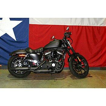 2019 Harley-Davidson Sportster Iron 883 for sale 200955852
