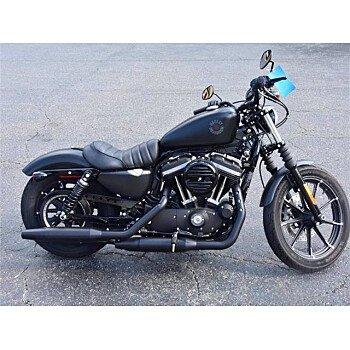 2019 Harley-Davidson Sportster for sale 200958766