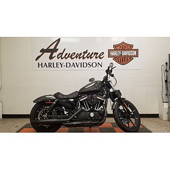 2019 Harley-Davidson Sportster Iron 883 for sale 200967212
