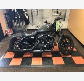 2019 Harley-Davidson Sportster Iron 883 for sale 200967291