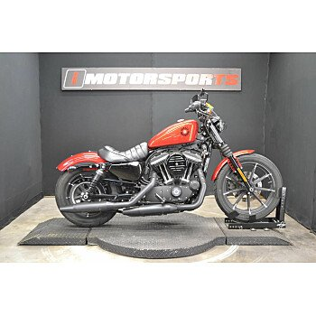 2019 Harley-Davidson Sportster Iron 883 for sale 200967628