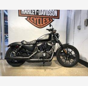 2019 Harley-Davidson Sportster Iron 883 for sale 200968527