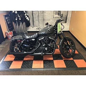 2019 Harley-Davidson Sportster Iron 883 for sale 200969879