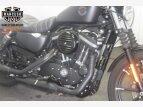 2019 Harley-Davidson Sportster Iron 883 for sale 201000429