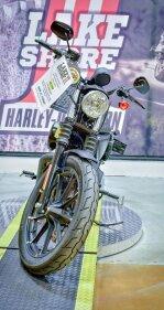 2019 Harley-Davidson Sportster Iron 883 for sale 201005698