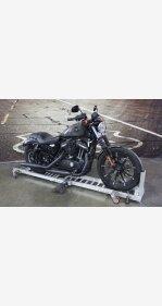 2019 Harley-Davidson Sportster Iron 883 for sale 201005801