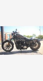 2019 Harley-Davidson Sportster Iron 883 for sale 201006325